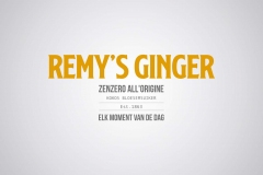 Remys-Ginger-Logo-Official-2018